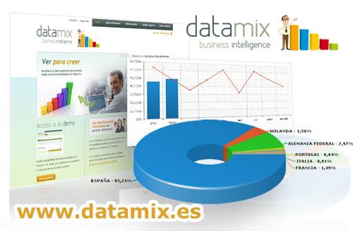 DataMix Busines Intelligence, software online